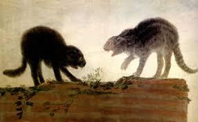 Goya Gatos